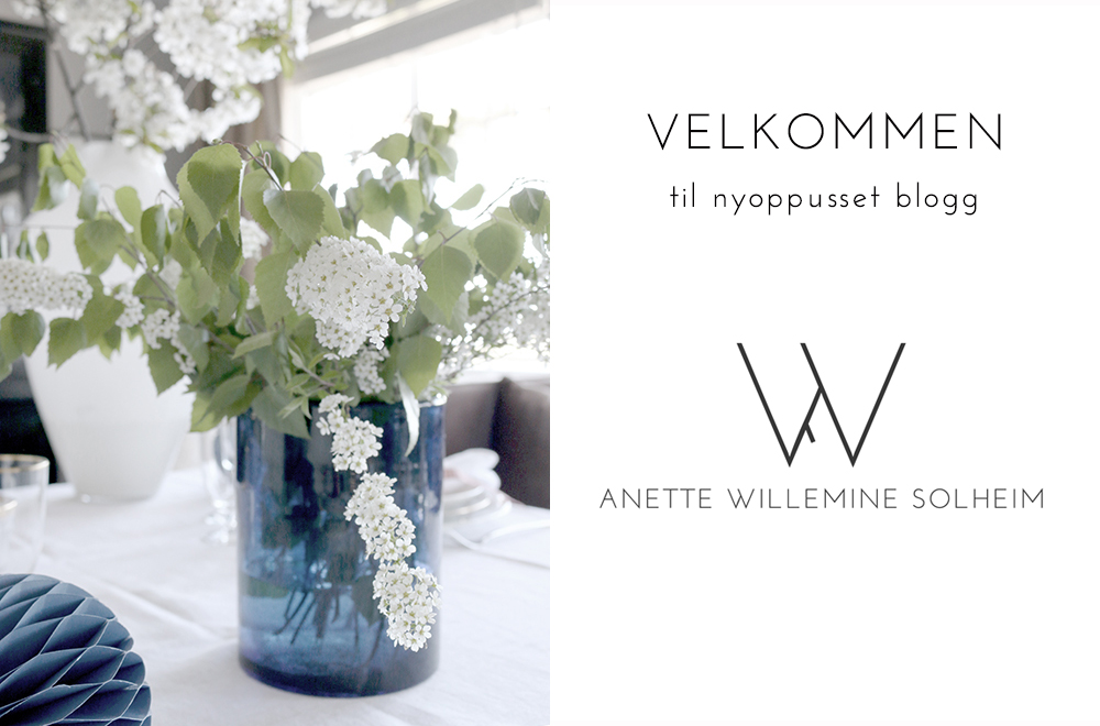 http://anettewillemine.com/